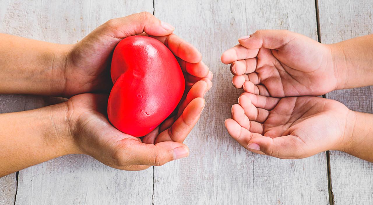 Organ Donation in India
